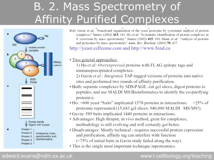 B. 2. Mass Spectrometry of
