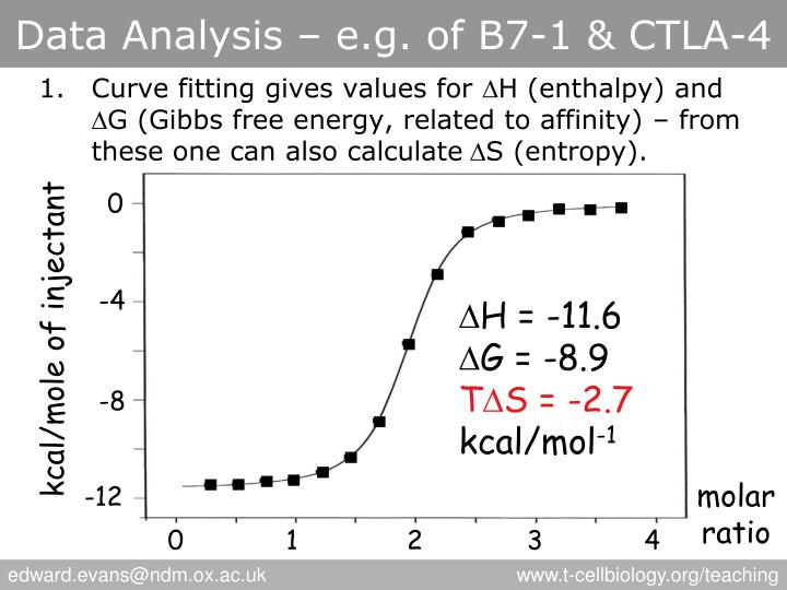 Data Analysis – e.g. of B7-1 & CTLA-4