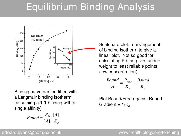 Equilibrium Binding Analysis