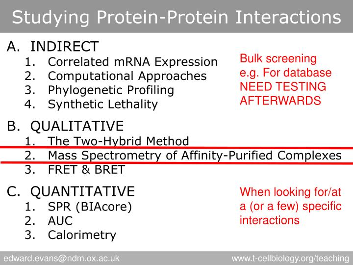 Studying Protein-Protein Interactions