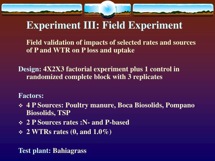 Experiment III: Field Experiment