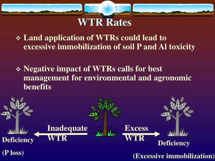 WTR Rates