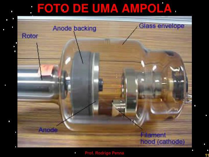 FOTO DE UMA AMPOLA