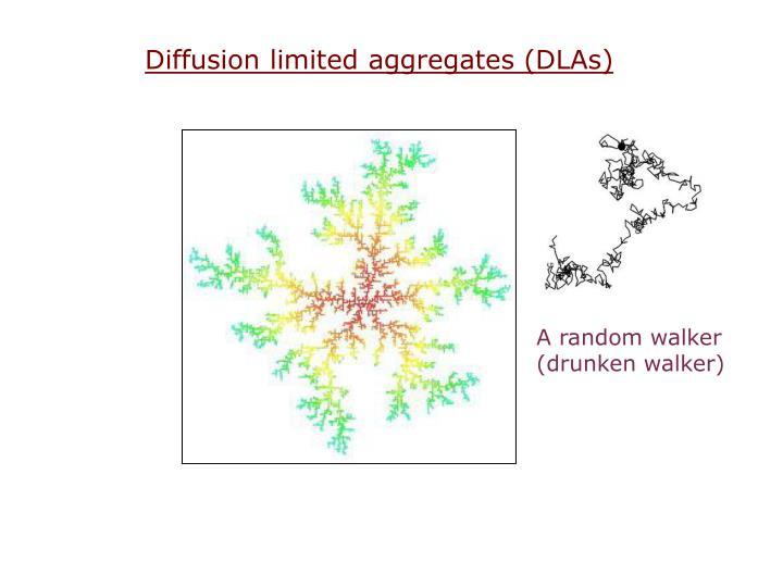 Diffusion limited aggregates (DLAs)