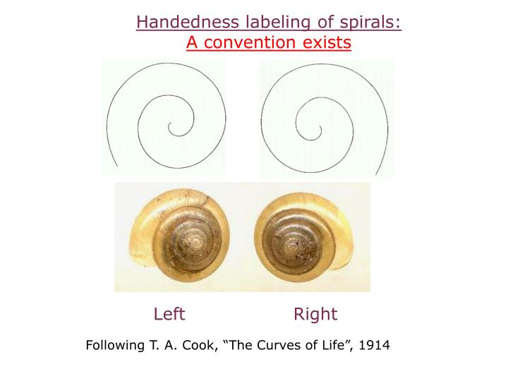 Handedness labeling of spirals: