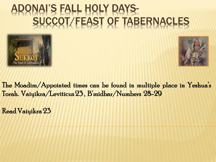 The Moadim/Appointed times can be found in multiple place in Yeshua's Torah.  Vaiyikra/Leviticus 23 ,