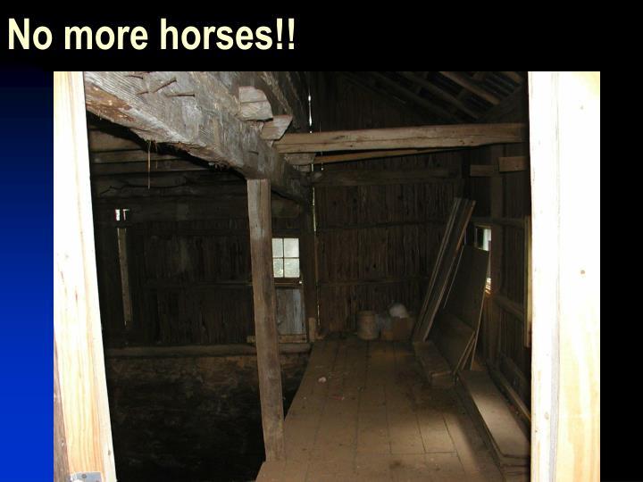 No more horses!!
