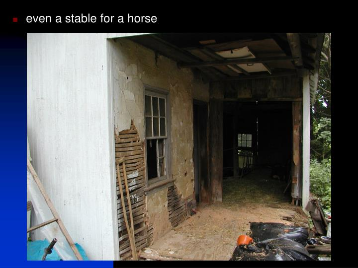 even a stable for a horse