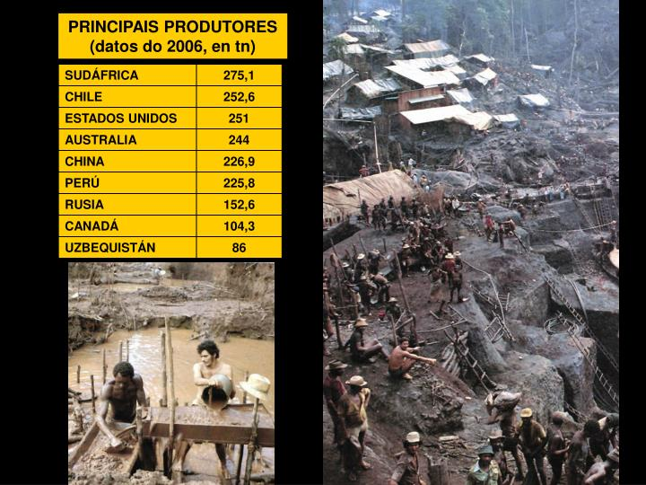 PRINCIPAIS PRODUTORES (datos do 2006, en tn)