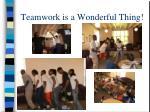 teamwork is a wonderful thing