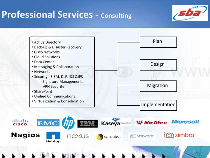 Professional Services -