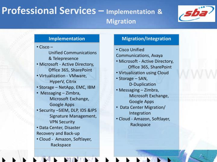 Professional Services –