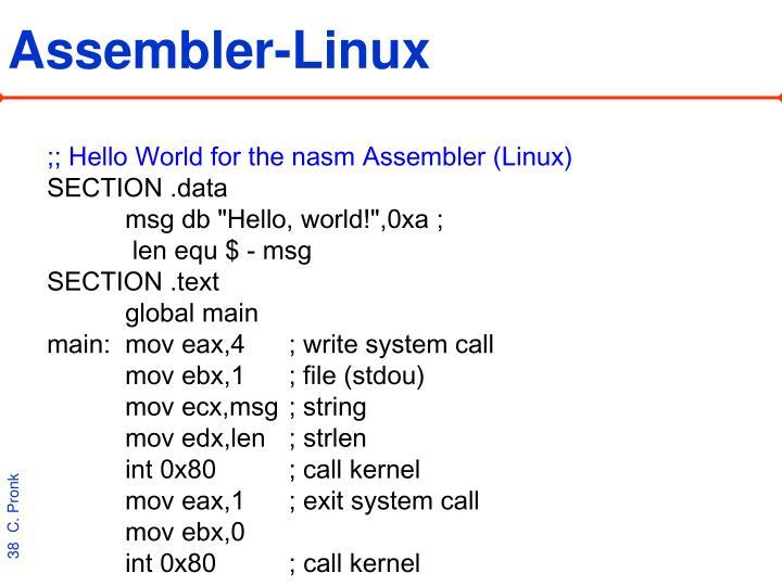 Assembler-Linux