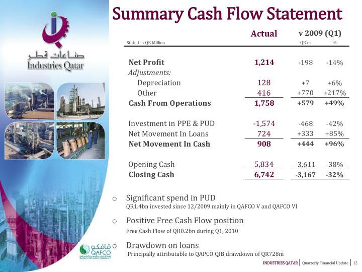 Summary Cash Flow Statement