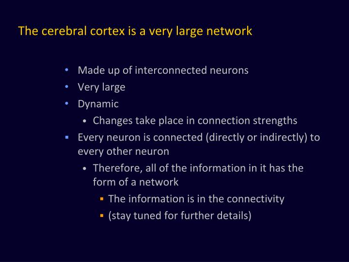 The cerebral cortex is a very large network