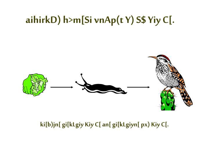 aihirkD) h>m[Si vnAp(t Y) S$ Yiy C[.