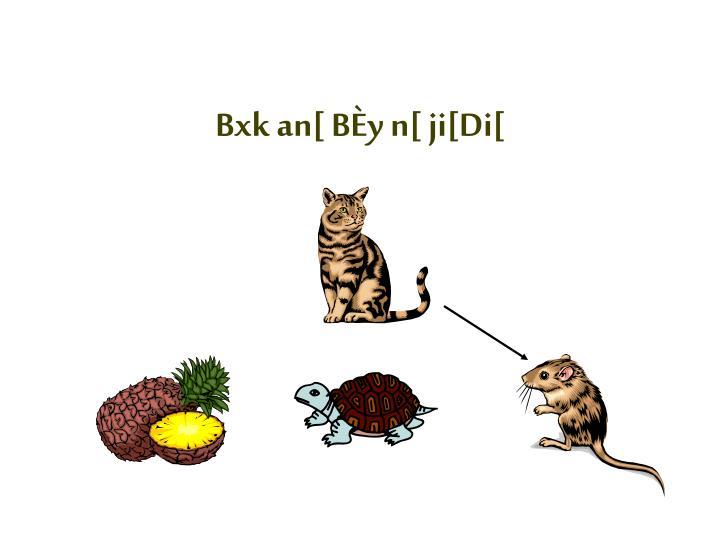 Bxk an[ BÈy n[ ji[Di[
