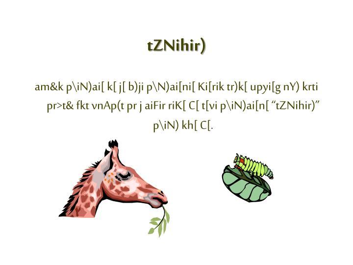 tZNihir)