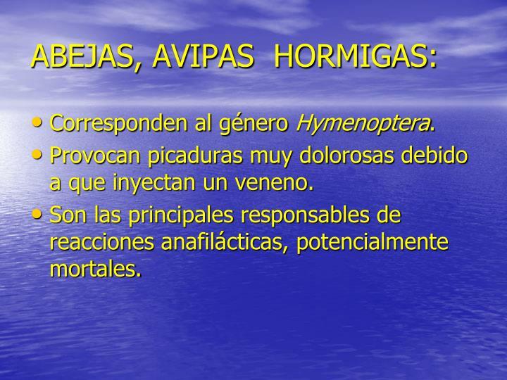 ABEJAS, AVIPAS  HORMIGAS: