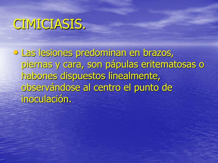 CIMICIASIS.