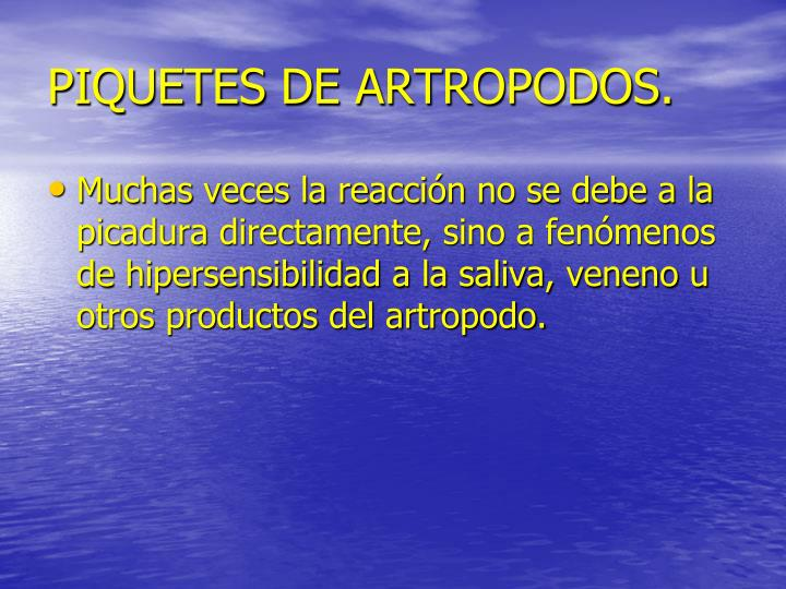 PIQUETES DE ARTROPODOS.
