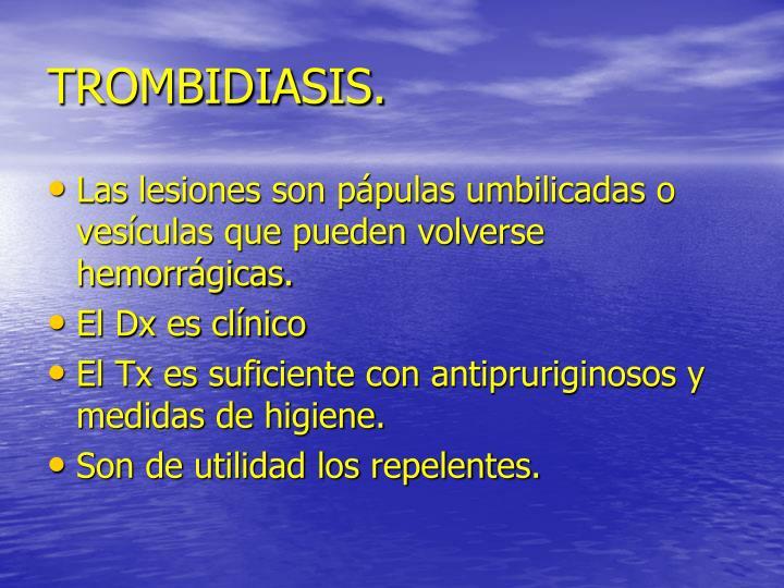 TROMBIDIASIS.