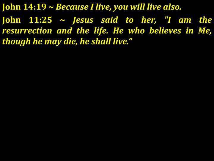 John 14:19 ~