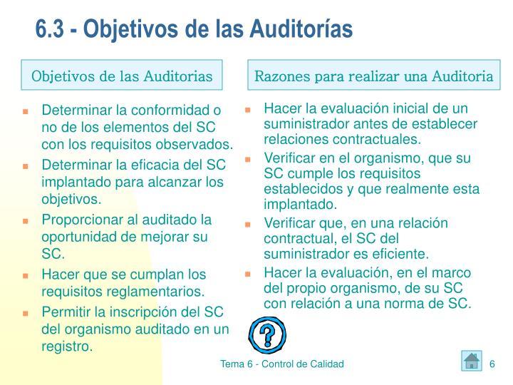 6.3 - Objetivos de las Auditorías