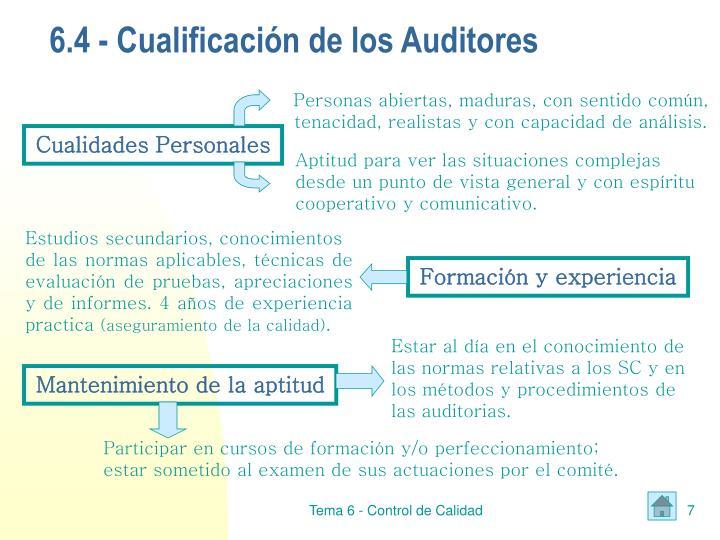 6.4 - Cualificación de los Auditores