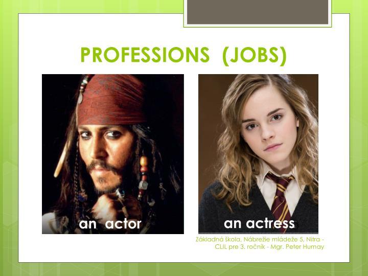 PROFESSIONS  (JOBS)