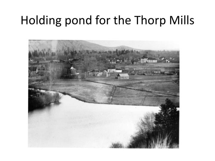 Holding pond for the Thorp Mills