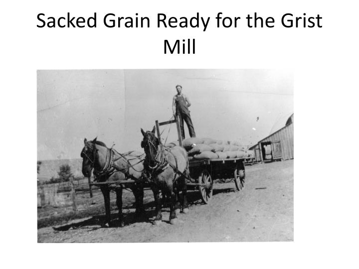 Sacked Grain Ready for the Grist Mill