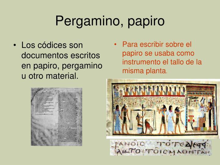 Los códices son documentos escritos en papiro, pergamino u otro material.