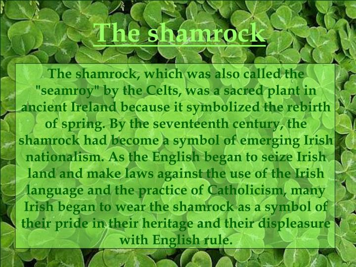 "The shamrock, which was also called the ""seamroy"" by the Celts, was a sacred plant in ancient Ireland because it symbolized the rebirth of spring. By the seventeenth century, the shamrock had become a symbol of emerging Irish nationalism. As the English began to seize Irish land and make laws against the use of the Irish language and the practice of Catholicism, many Irish began to wear the shamrock as a symbol of their pride in their heritage and their displeasure with English rule."