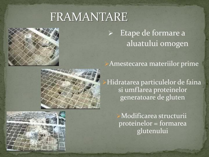 FRAMANTARE