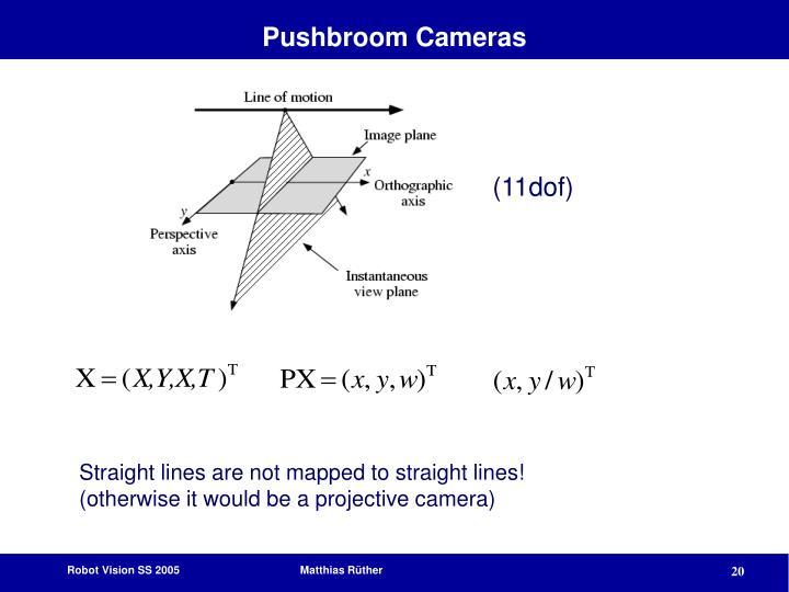 Pushbroom Cameras