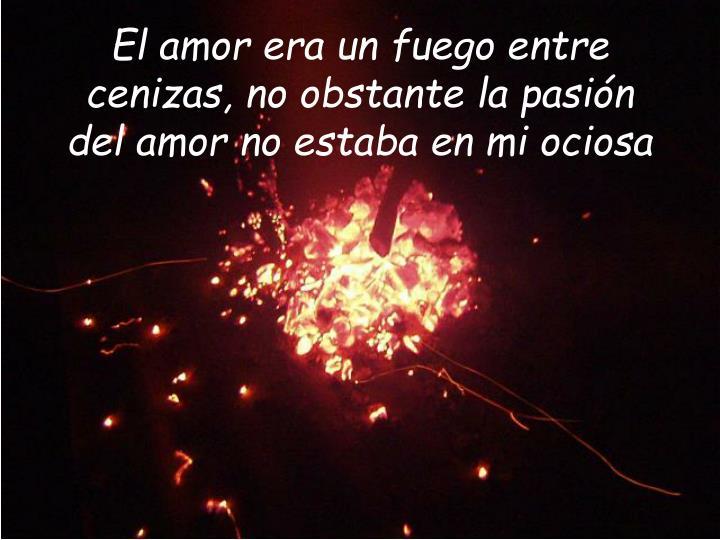 El amor era un fuego entre cenizas, no obstante la pasión del amor no estaba en mi ociosa