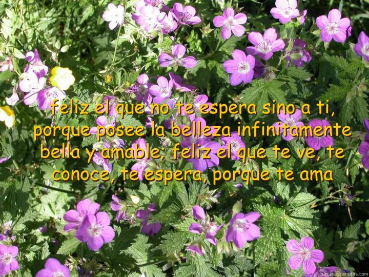 feliz el que no te espera sino a ti, porque posee la belleza infinitamente bella y amable; feliz el que te ve, te conoce, te espera, porque te ama