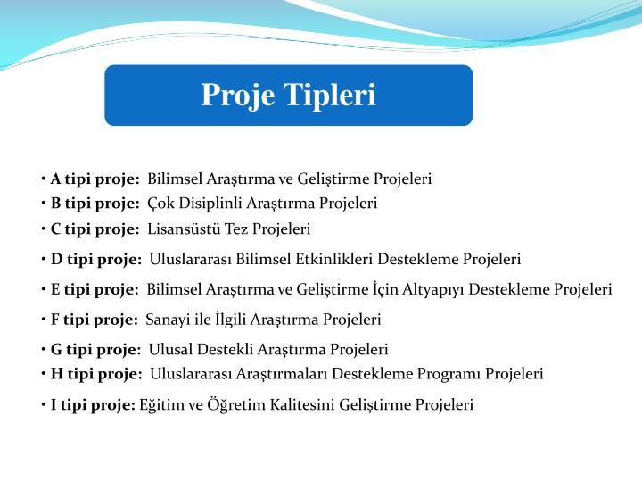 Proje Tipleri