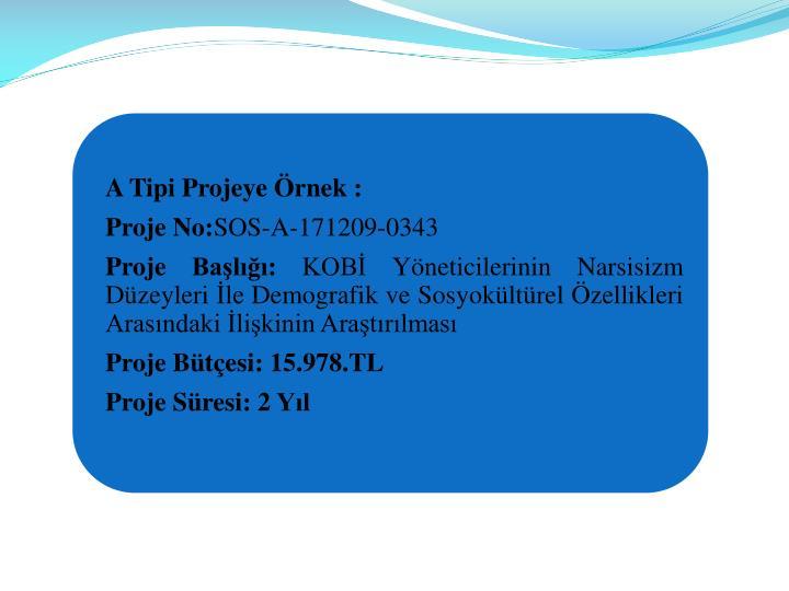 A Tipi Projeye rnek :