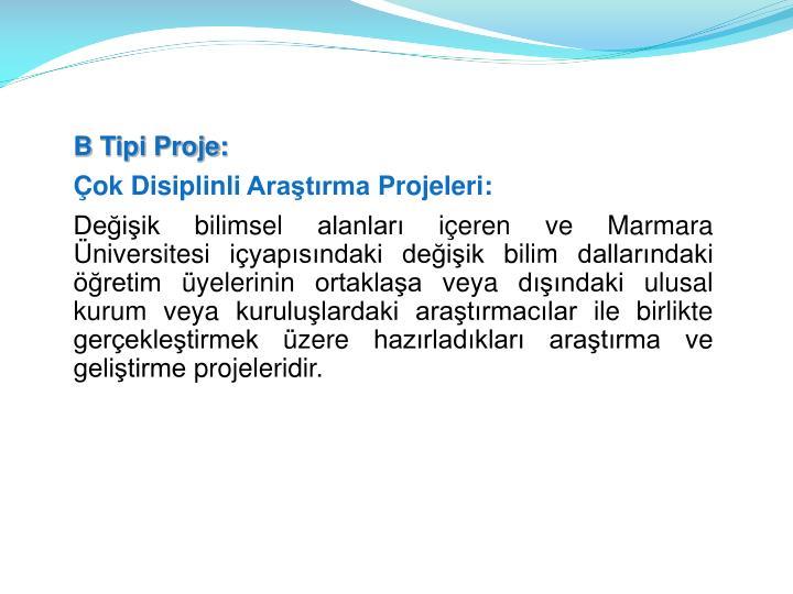 B Tipi Proje: