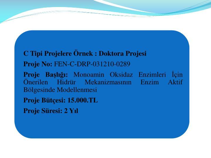 C Tipi Projelere rnek : Doktora Projesi