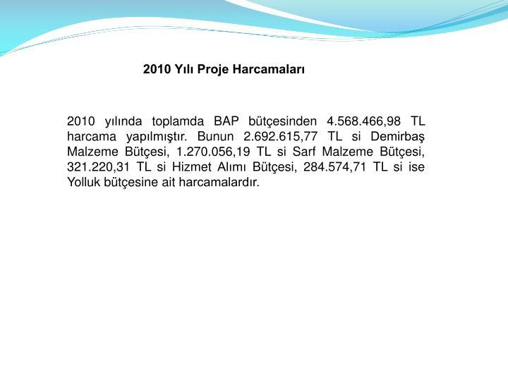 2010 Yl Proje Harcamalar