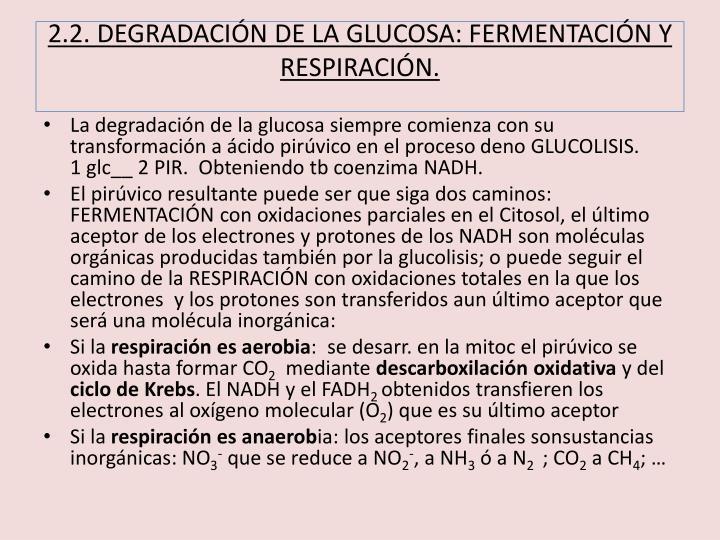 2.2. DEGRADACIÓN DE LA GLUCOSA: FERMENTACIÓN Y RESPIRACIÓN.