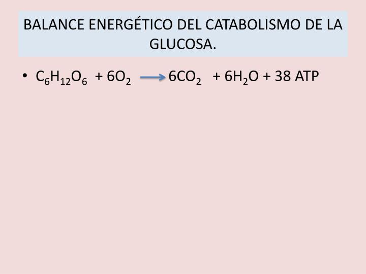 BALANCE ENERGÉTICO DEL CATABOLISMO DE LA GLUCOSA.