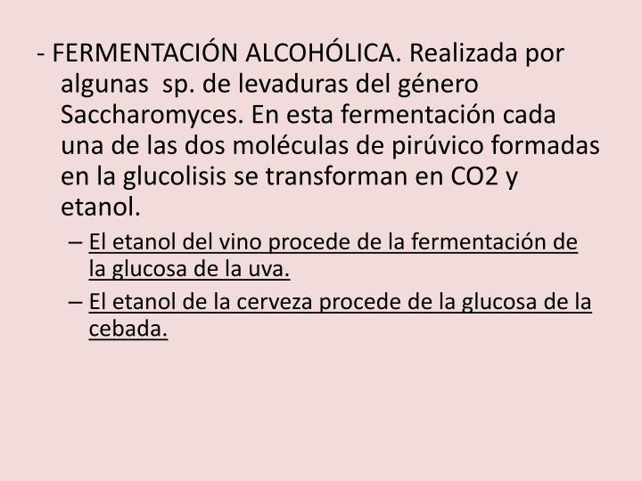 - FERMENTACIÓN ALCOHÓLICA. Realizada por algunas