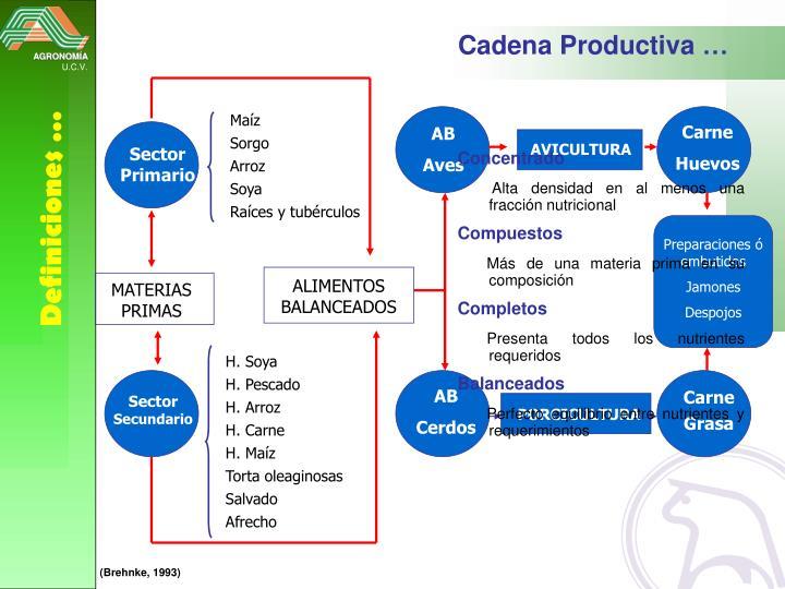 Cadena Productiva …
