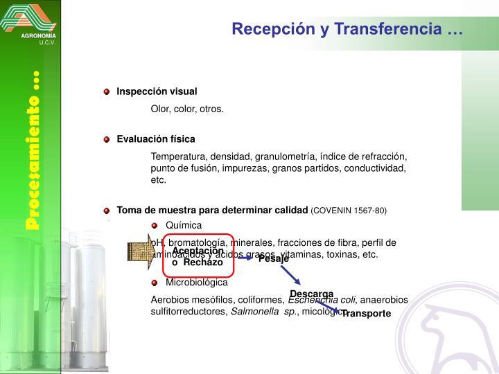 Recepción y Transferencia …