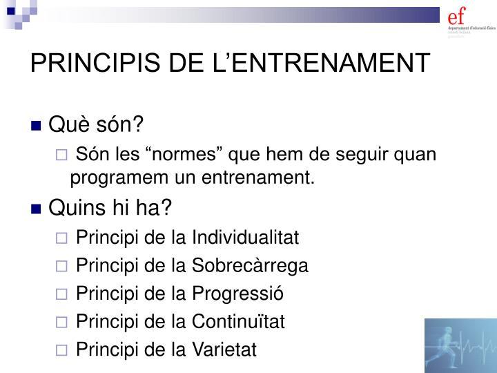 PRINCIPIS DE L'ENTRENAMENT