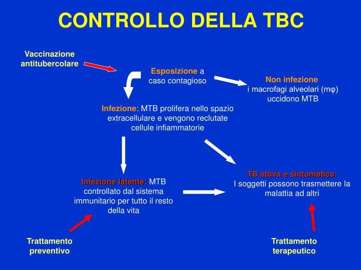 CONTROLLO DELLA TBC